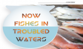 Now fishes in troubled waters