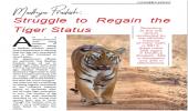 Madhya Pradesh: Struggle to Regain the Tiger Status