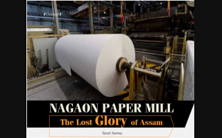 Nagaon Paper Mill: The Lost Glory of Assam