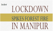 Lockdown Spikes Forest Fire in Manipur